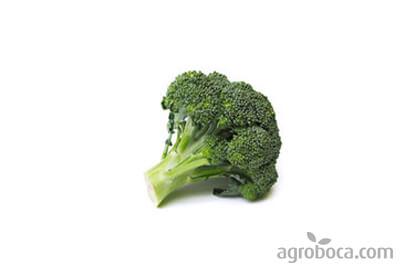 Brócoli ecológico 2 €/Kg