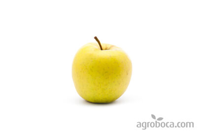 Manzanas Golden ECO 1/2 Kg