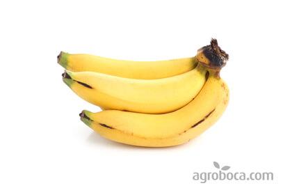Plátanos ECO 1/2