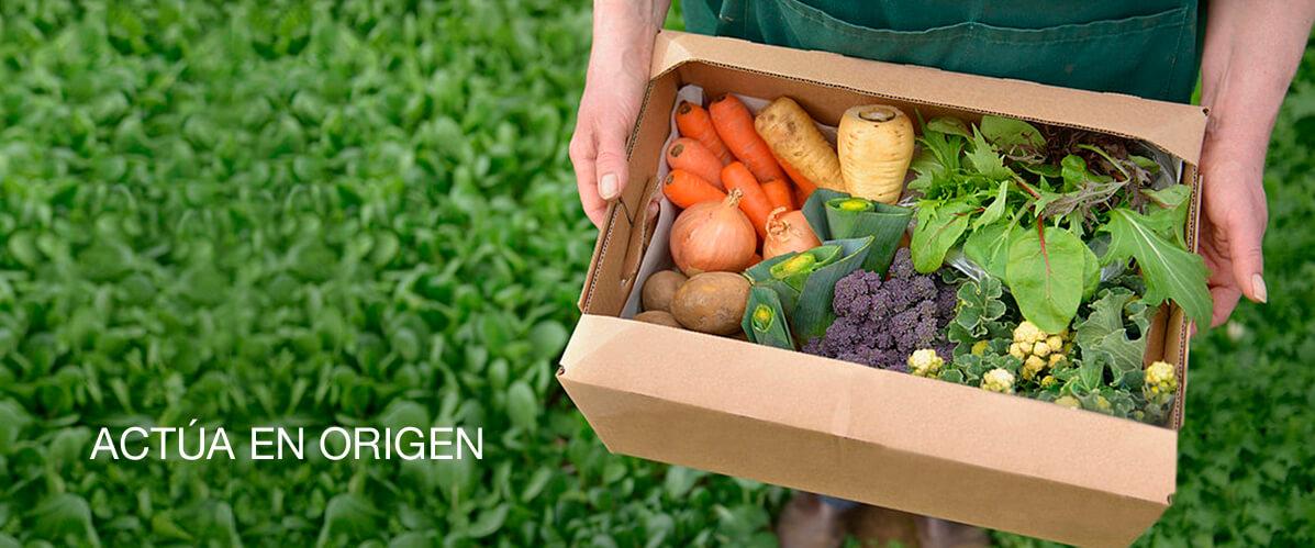 Agroboca. Actúa en origen. Frutas y verduras ecológicas y de temporada directas del agricultor.